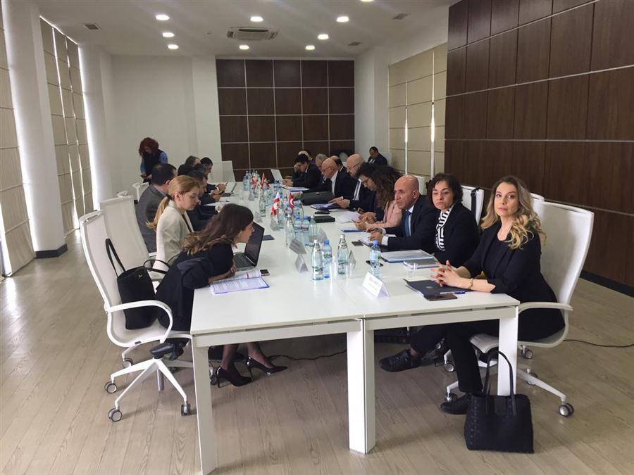 Türkiye ve Gürcistan arasında üst düzey görüşme toplantısı yapıldı.